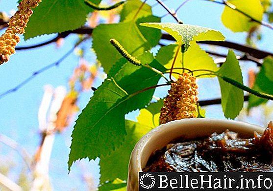 Дегтярный шампунь от перхоти и выпадения волос – польза и вред